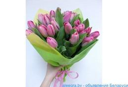 Цветы 8 марта: крокусы, примула, гиацынты, тюльпаны.