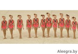 Купальники для эстетической гимнастики