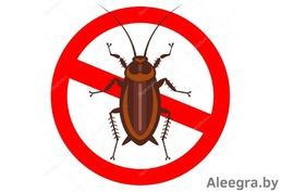 Поможем избавиться от клопов, тараканов, блох