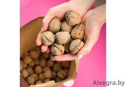 Домашние грецкие орехи