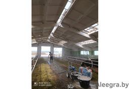 Побелка животноводческих ферм